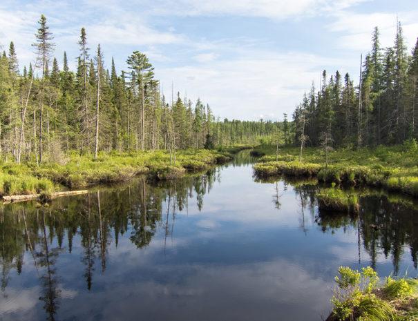 Ena Lake Tranquility