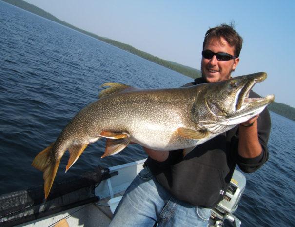 trout-trophy